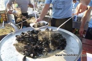 Muscheln in Istrien