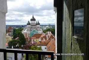 Blick von der Nikolaikirche