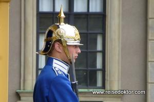 Wache am Königspalast