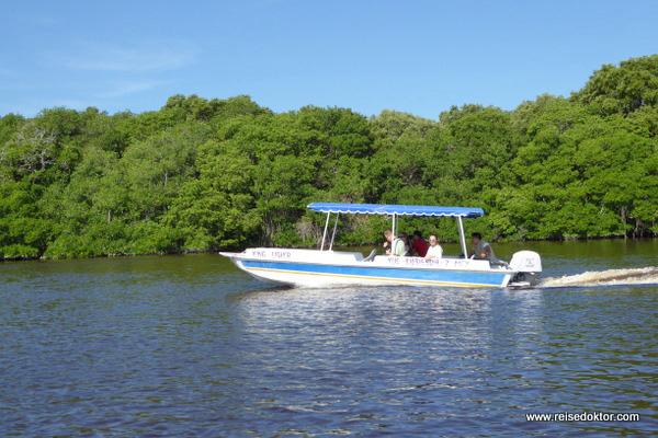 Bootsfahrt Celestún