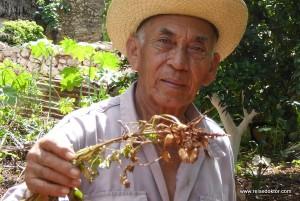 Mayakultur auf der Halbinsel Yucatán