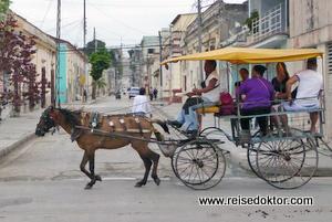 Pferdefuhrwerk in Manzanillo