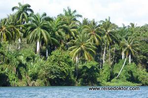 Rio Tao bei Baracoa