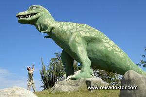 Tyrannosaurus Rex auf Kuba