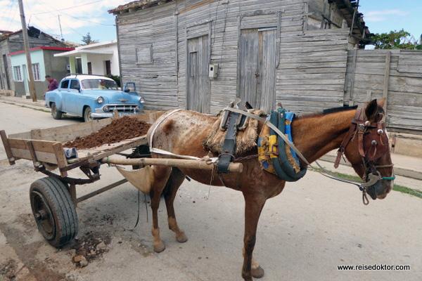 Gibara Pferdefuhrwerk