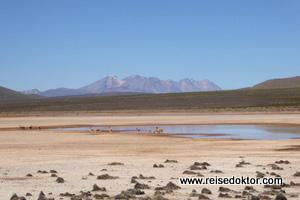 Andenhochland von Peru