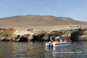 Bootsfahrt Ballestas Inseln
