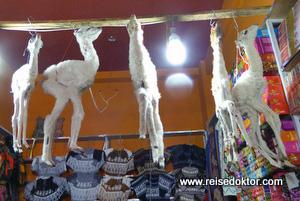 Lamaföten am Hexenmarkt
