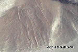 Nazca Bodenzeichnung