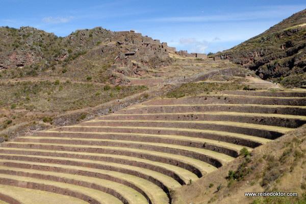 Terrassenfelder Pisaq Peru