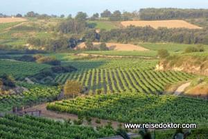 Wein und Genuss in der Rioja Alavesa im Baskenland