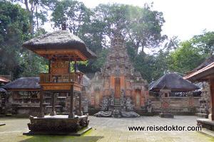 Monkey Forest Tempel