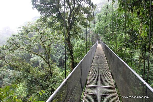 Hängebrücke Costa Rica