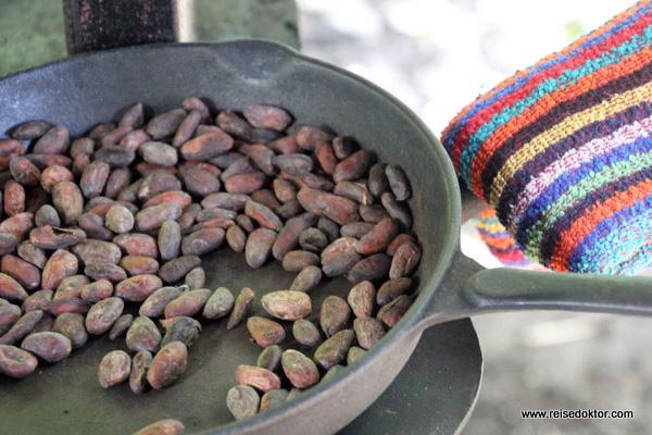 Kakaobohnen Costa Rica