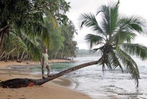 Costa Rica: Namuwoki Lodge und die Strände um Puerto Viejo