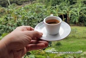 Costa Rica: Kaffeetour bei Don Juan in Monteverde