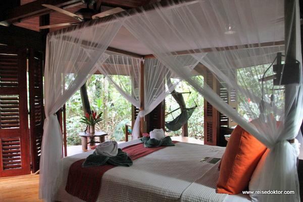 Nicuesa Lodge Zimmer