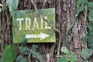 Costa Rica: Spurensuche im Nationalpark Piedras Blancas