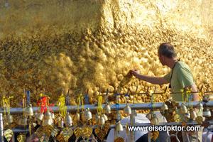 Goldener Felsen Reisedoktor