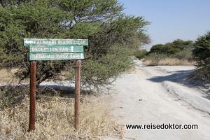 Pisten in der Kalahari