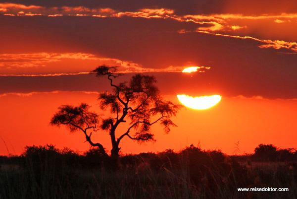 Sonnenuntergang Chobe Nationalpark
